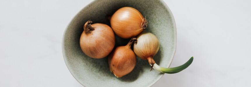 Zwiebeln sind antibakteriell und lindern Beschwerden wie Husten oder einen Insektenstich.